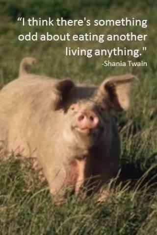 Quote Shania Twain